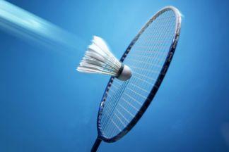 badminton_480x320